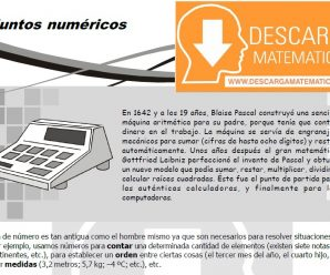 DESCARGAR CONJUNTOS NUMÉRICOS PARA ESTUDIANTES DE PRIMERO DE SECUNDARIA