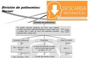 DIVISIÓN DE POLINOMIOS (HORNER, RUFFINI Y TEOREMA DEL RESTO)