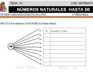 DESCARGAR NUMEROS NATURALES HASTA 50 – MATEMATICA PRIMERO DE PRIMARIA