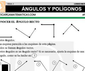 DESCARGAR ANGULOS Y POLIGONOS – MATEMATICA TERCERO DE PRIMARIA