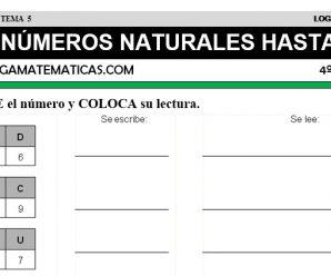 DESCARGAR NUMEROS HASTA 10000 – MATEMATICA CUARTO DE PRIMARIA