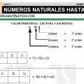 DESCARGAR NUMEROS HASTA 999 – MATEMATICA TERCERO DE PRIMARIA