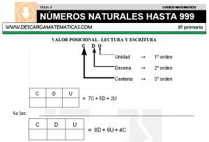 05 NÚMEROS NATURALES HASTA 999 - TERCERO DE PRIMARIA