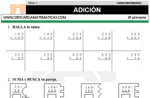07 ADICIÓN - TERCERO DE PRIMARIA