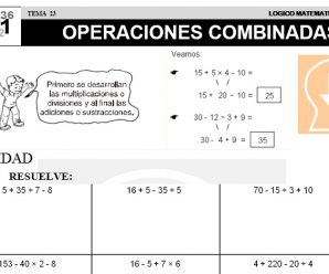 DESCARGAR OPERACIONES COMBINADAS – MATEMATICA SEGUNDO DE PRIMARIA