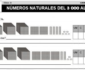 DESCARGAR LOS NUMEROS DEL 3000 AL 5000 – MATEMATICA SEGUNDO DE PRIMARIA