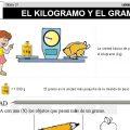 DESCARGAR EL KILOGRAMO Y EL GRAMO – MATEMATICA SEGUNDO DE PRIMARIA