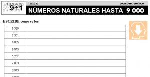 32 NÚMEROS HASTA 9000 - SEGUNDO DE PRIMARIA