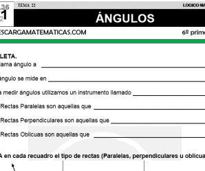 DESCARGAR ANGULOS – MATEMATICA SEXTO DE PRIMARIA